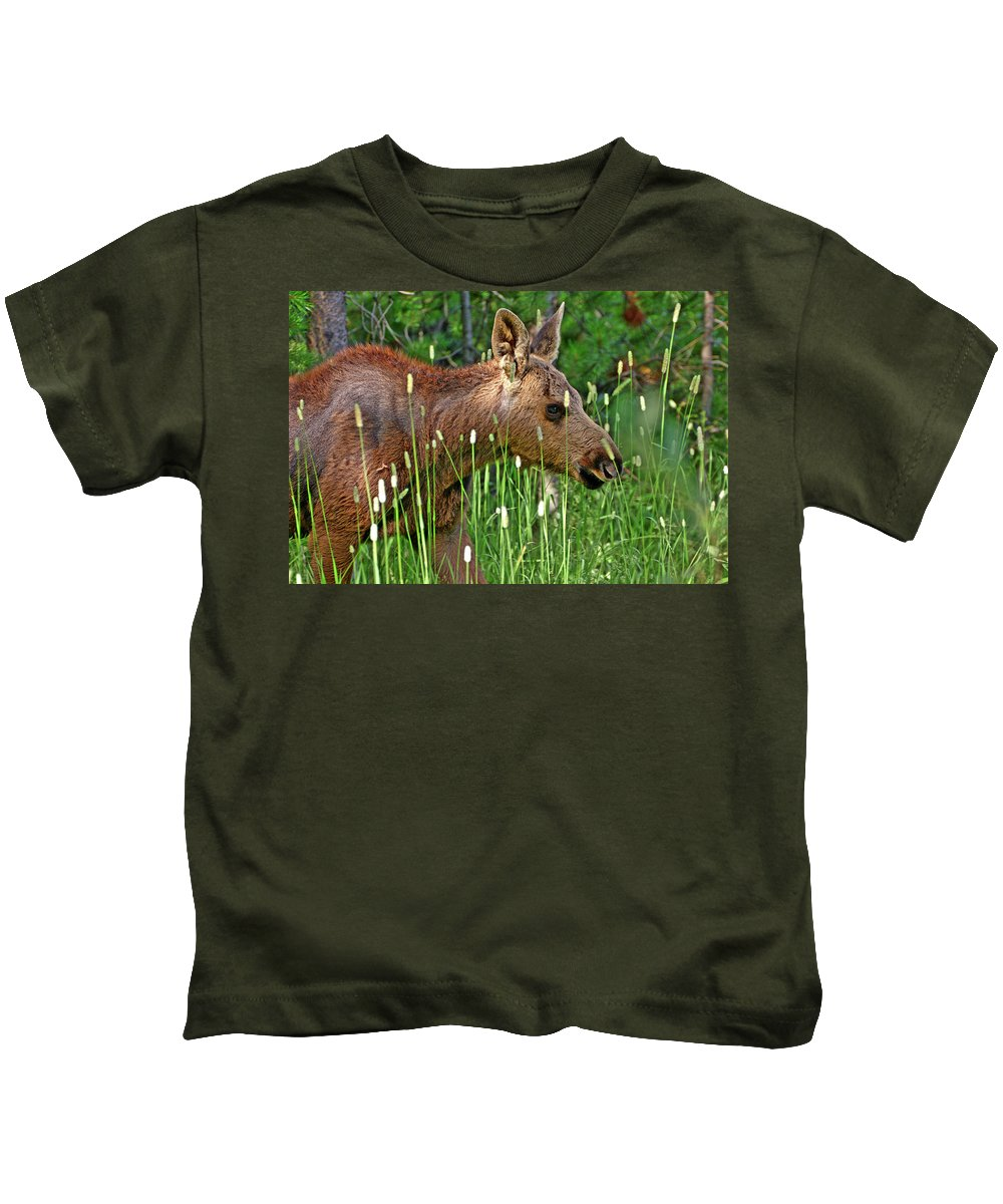 Moose Kids T-Shirt featuring the photograph Baby Moose by Scott Mahon