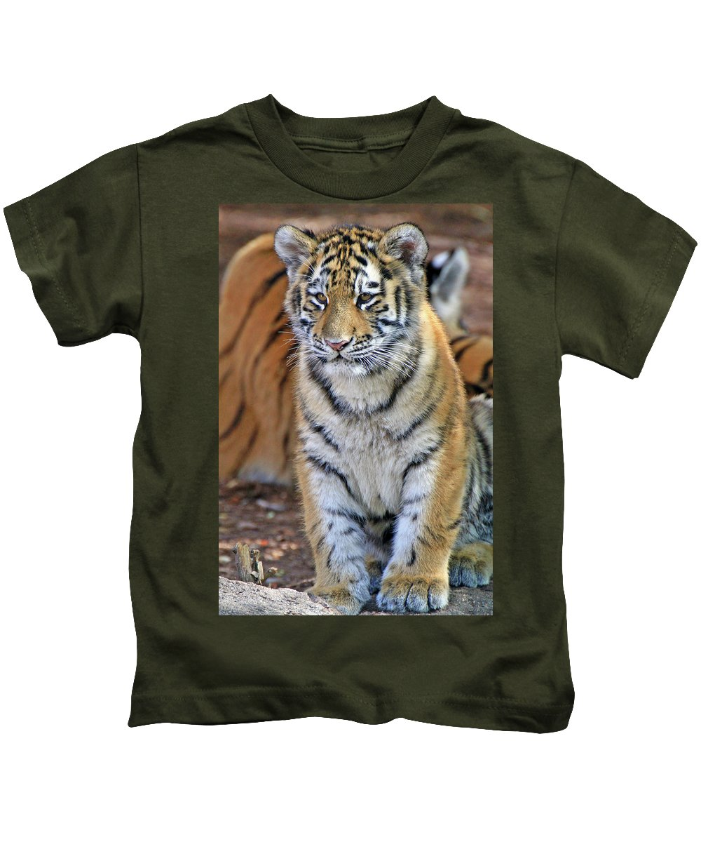 Tiger Kids T-Shirt featuring the photograph Baby Stripes by Scott Mahon