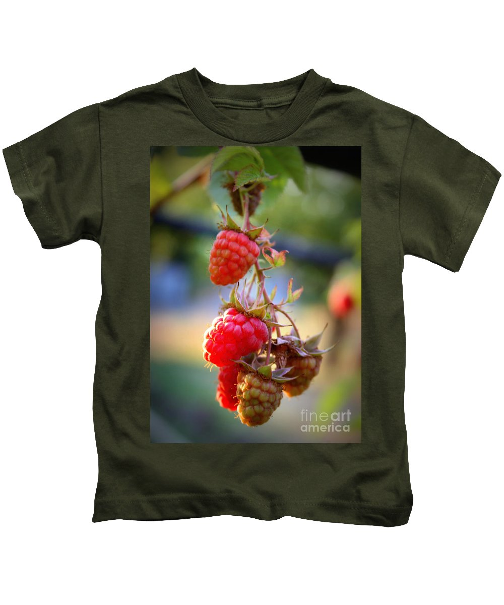 Food And Beverage Kids T-Shirt featuring the photograph Backyard Garden Series - The Freshest Raspberries by Carol Groenen