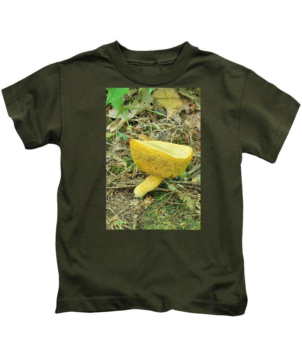 Plants Kids T-Shirt featuring the photograph Bay Bolete Fungus by Alan Lenk