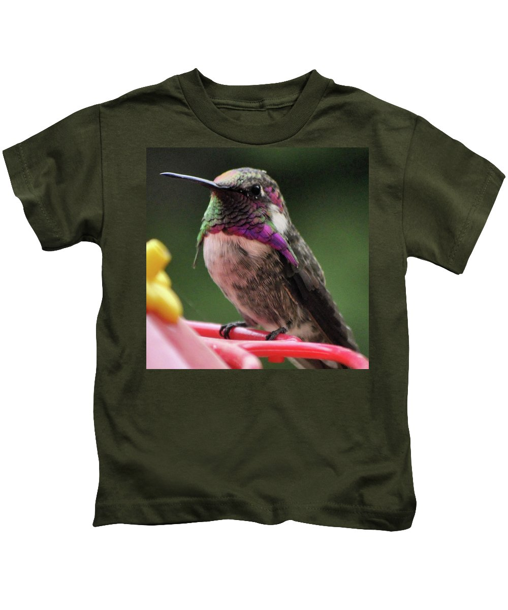 Animal Kids T-Shirt featuring the photograph Beautiful Anna's Hummingbird On Perch by Jay Milo