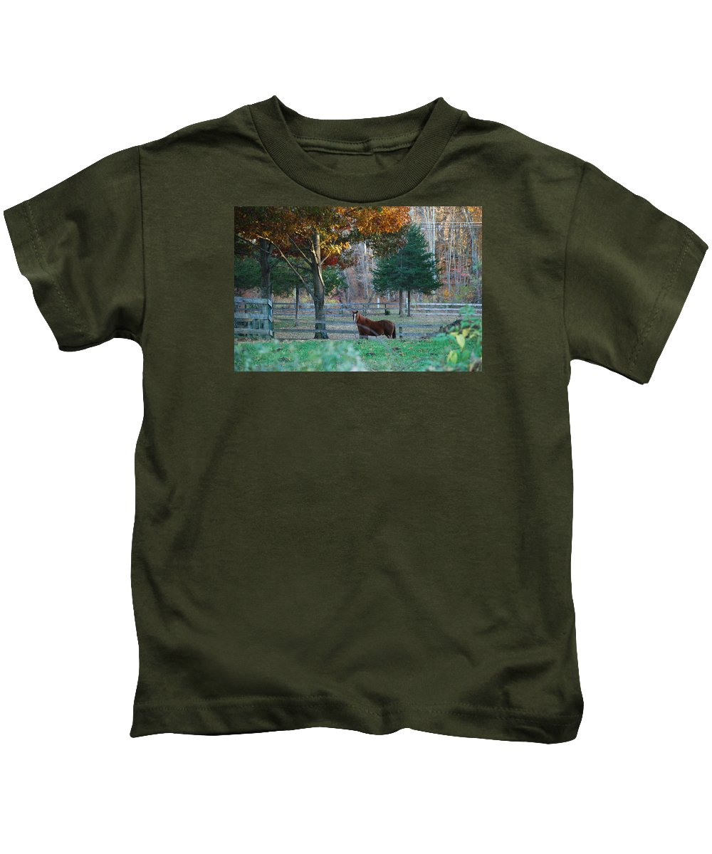Horse Kids T-Shirt featuring the photograph Beautiful Brown Horse by Susan Strickland