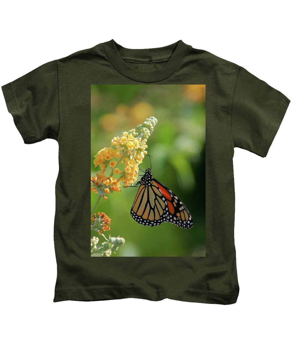 Butterfly Kids T-Shirt featuring the photograph Beautiful Butterfly by Karol Livote