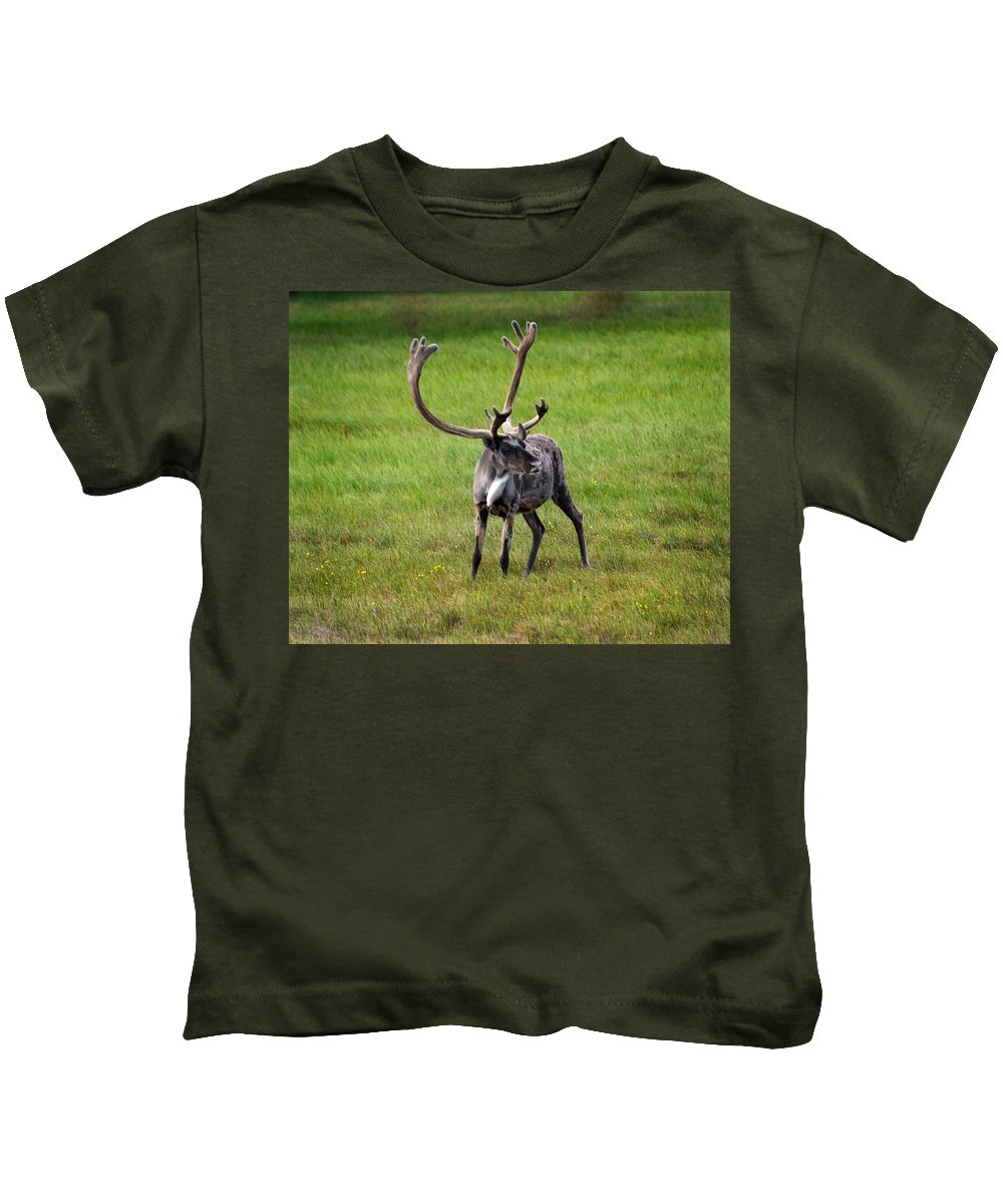 Caribou Kids T-Shirt featuring the photograph Big Horn by Anthony Jones