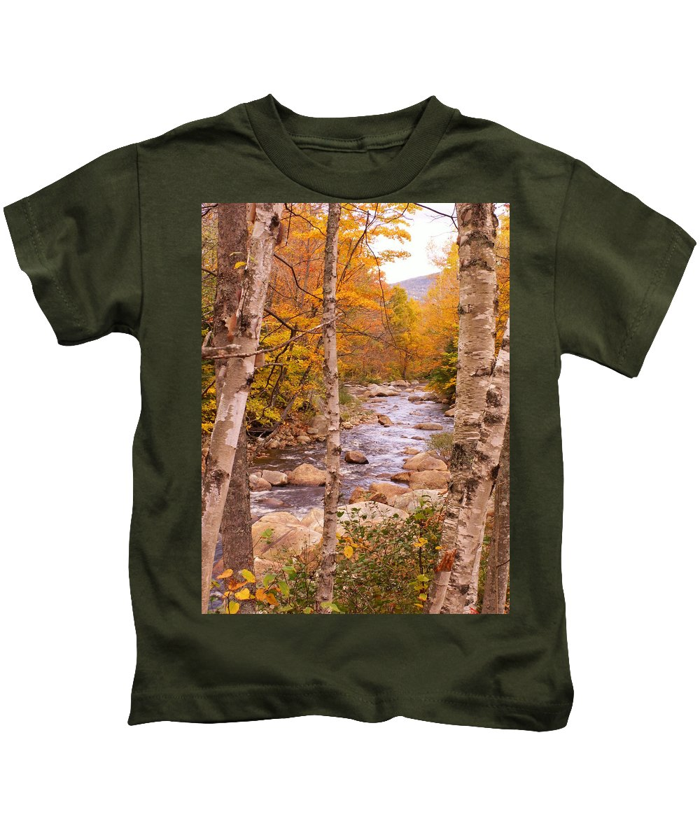 Landscape Kids T-Shirt featuring the photograph Birches On The Kancamagus Highway by Nancy Griswold