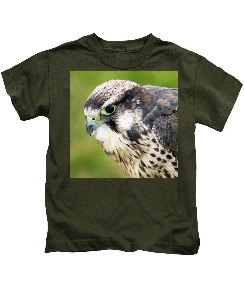 Falcon Kids T-Shirt featuring the photograph Bird Of Prey by Angel Ciesniarska