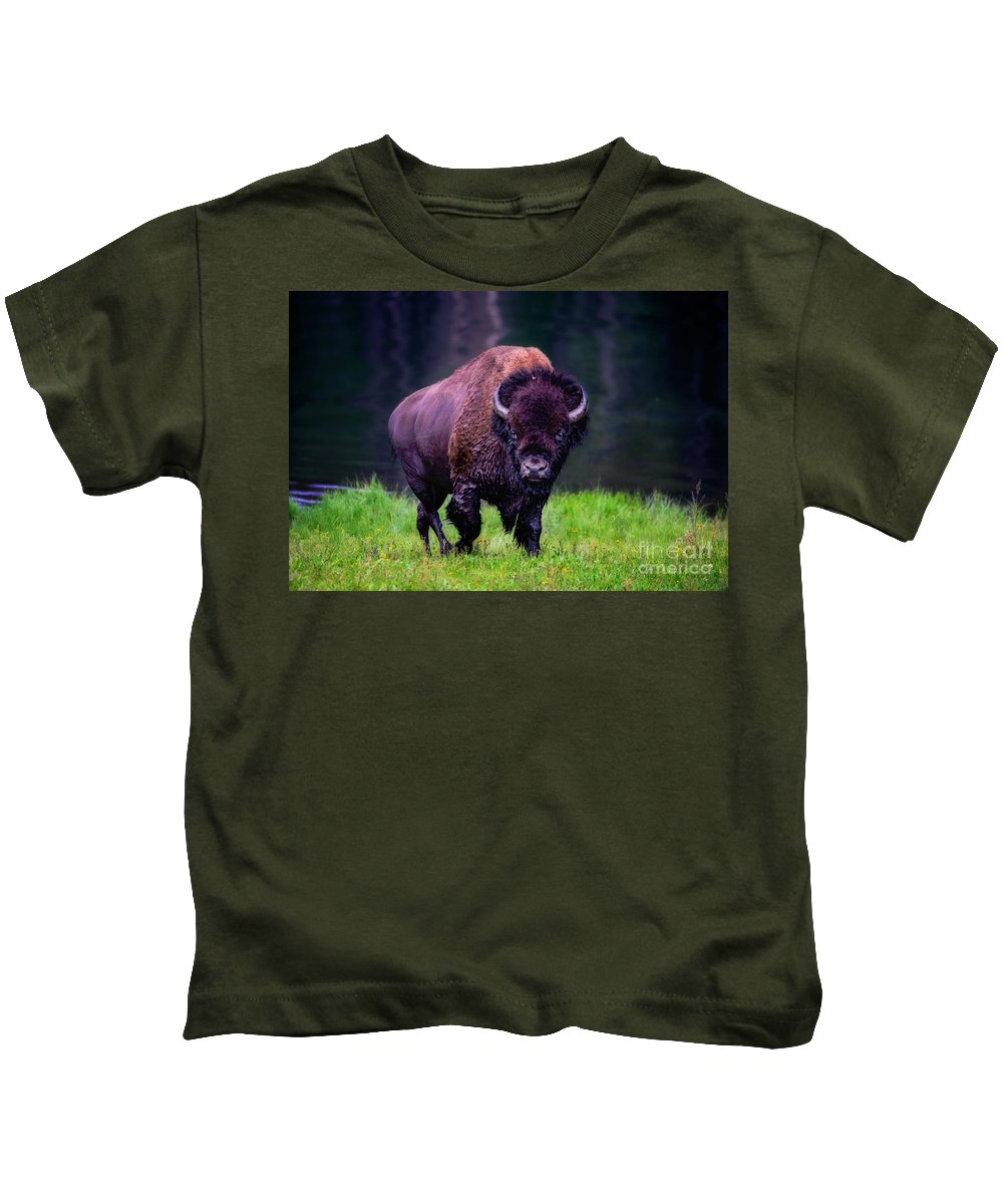 Buffalo Kids T-Shirt featuring the photograph Bison Of Yellowstone by Jim Hatch