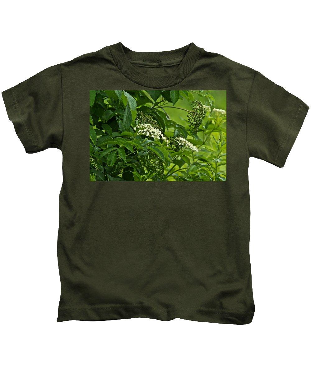 Elderberry Kids T-Shirt featuring the photograph Black Elderberry - Sambucus Nigra_0261black Elderberry - Sambucus Nigra by Mother Nature