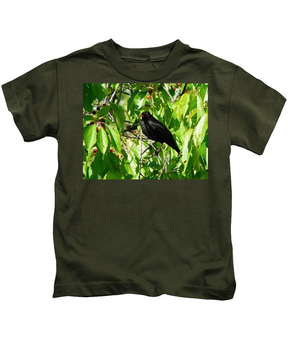 Bird Kids T-Shirt featuring the photograph Blackbird In The Cherry Tree by Valerie Ornstein