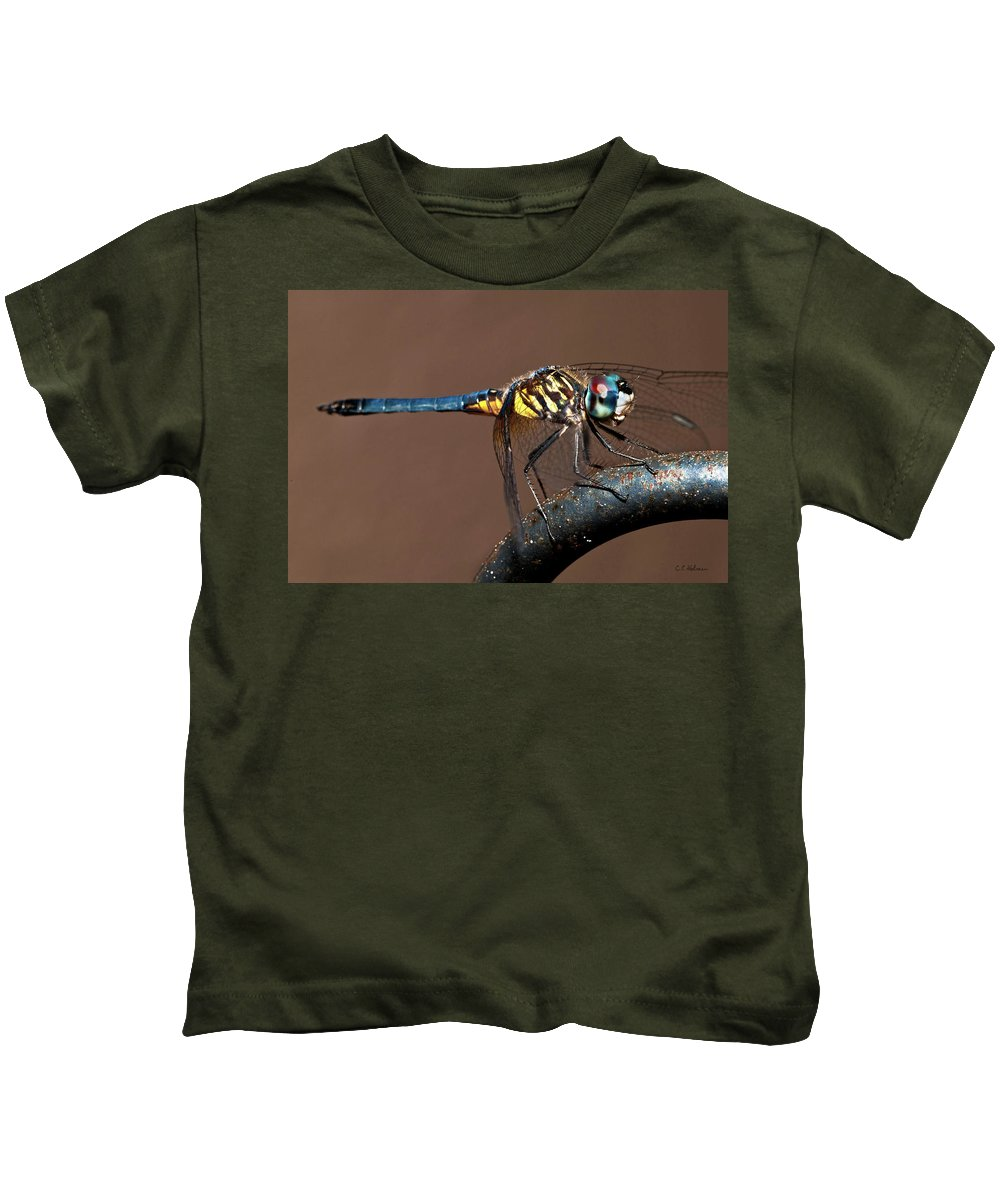 Dragonfly Kids T-Shirt featuring the photograph Blue And Gold Dragonfly by Christopher Holmes
