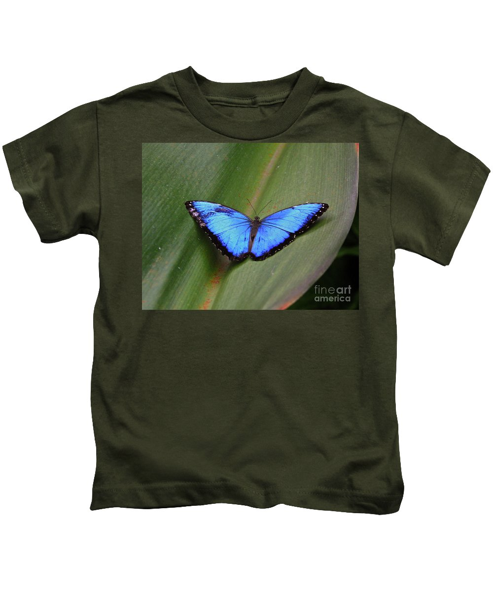 Common Morpho Kids T-Shirt featuring the photograph Blue by Robert Pearson