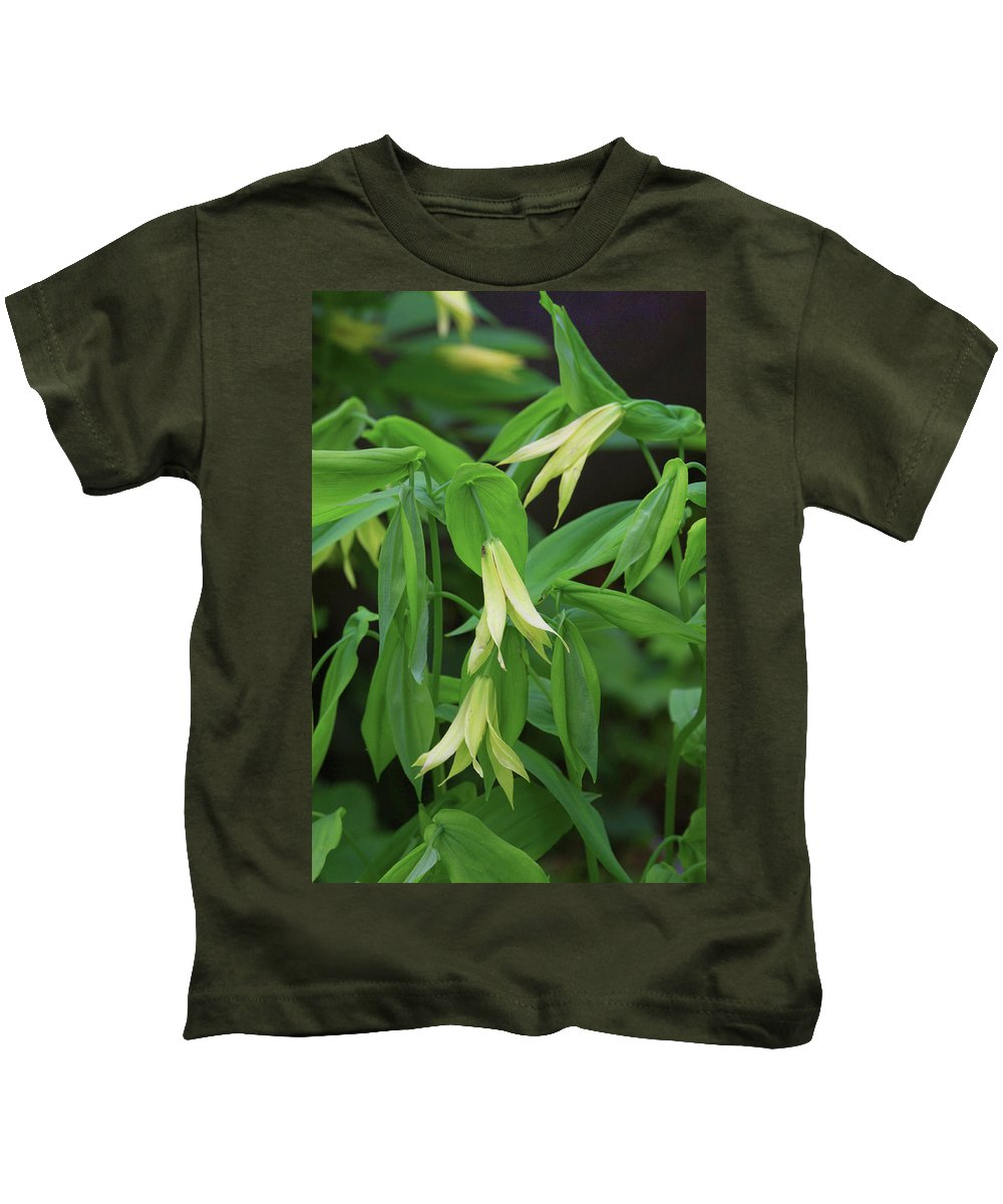 Plant Botanical Flower Bloom Yellow Uvularia Perfoliata Cowbells Wood Daffodil Merry Bells Photograph Photography Digital Fine Art Nature Natural Woods Wildflower Forest Kids T-Shirt featuring the photograph Bountiful Bellwort by Shari Jardina