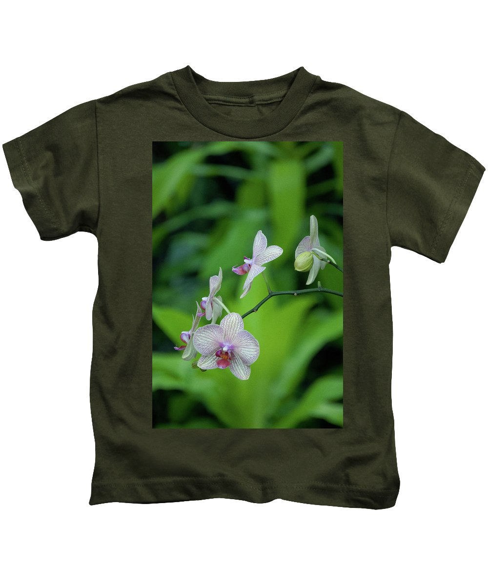 Green Kids T-Shirt featuring the photograph Bowersox by Trish Tritz