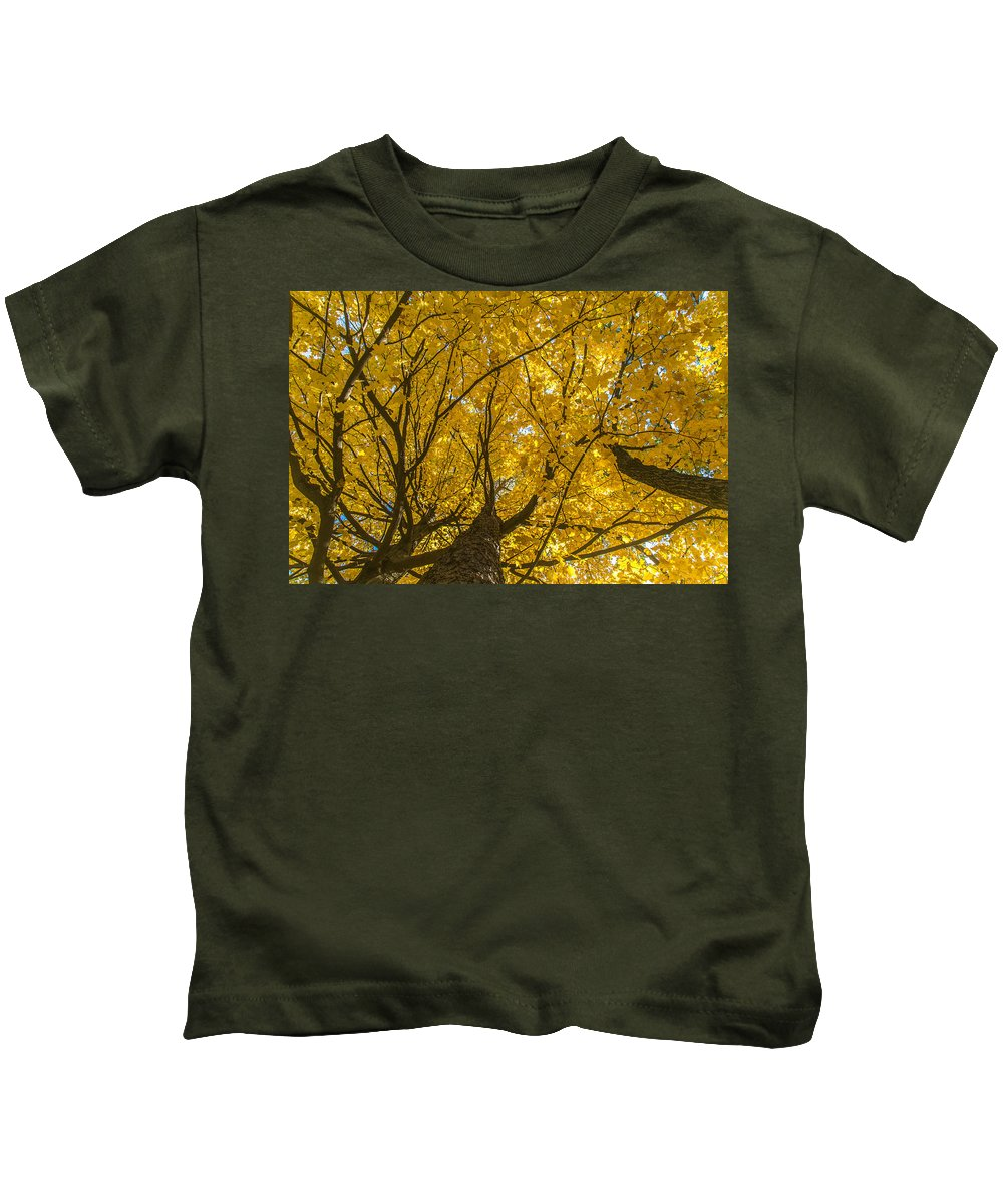 Fall Colors Kids T-Shirt featuring the photograph Brown County Colors by Matt Skinner