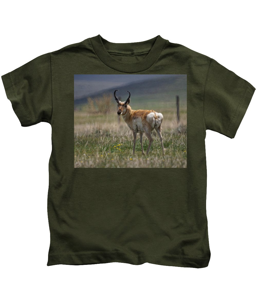 Buck Kids T-Shirt featuring the photograph Buck Antelope by Heather Coen