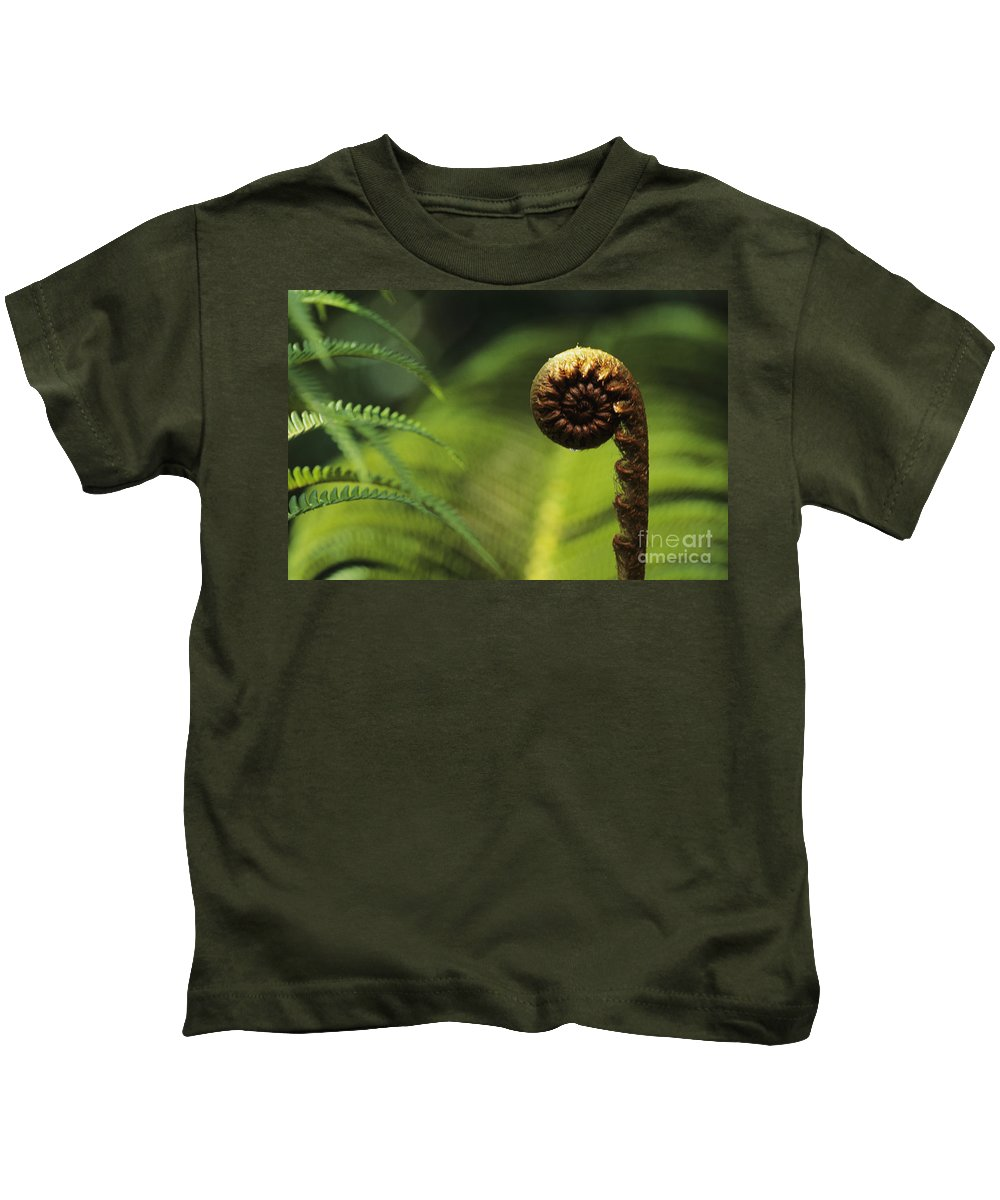 Beautiful Kids T-Shirt featuring the photograph Budding Fern by William Waterfall - Printscapes