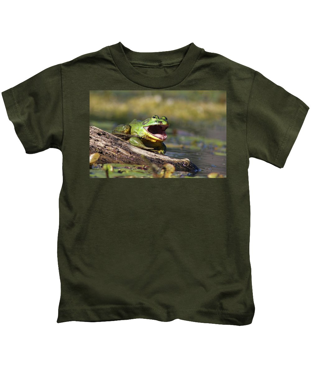 Amphibian Kids T-Shirt featuring the photograph Bull Frog by Mircea Costina Photography