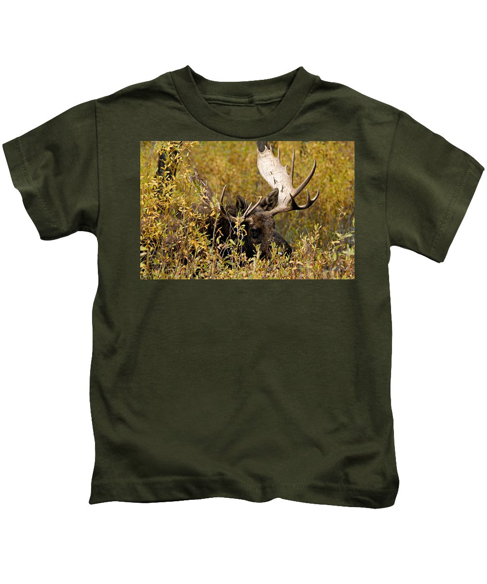 Grand Teton National Park Kids T-Shirt featuring the photograph Bull Moose In Hiding by Larry Ricker