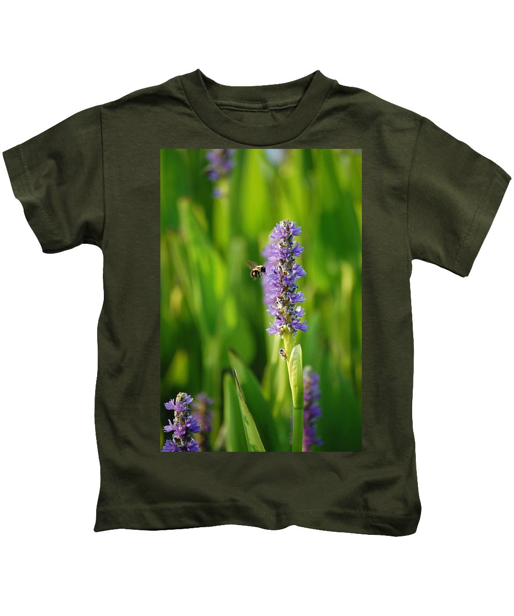 Bee Kids T-Shirt featuring the photograph Busy by Robert Meanor