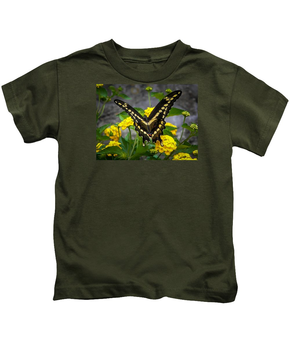 Kids T-Shirt featuring the photograph Butterfly 2 by Reed Tim