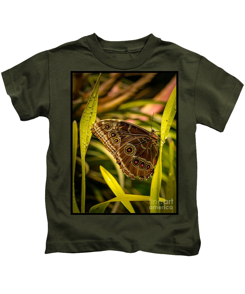 Butterfly Kids T-Shirt featuring the photograph Butterfly 25 by Larry White