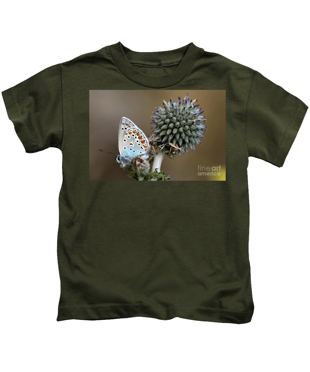 Butterfly Kids T-Shirt featuring the photograph butterfly on a Echinops adenocaulon by Nahum Budin