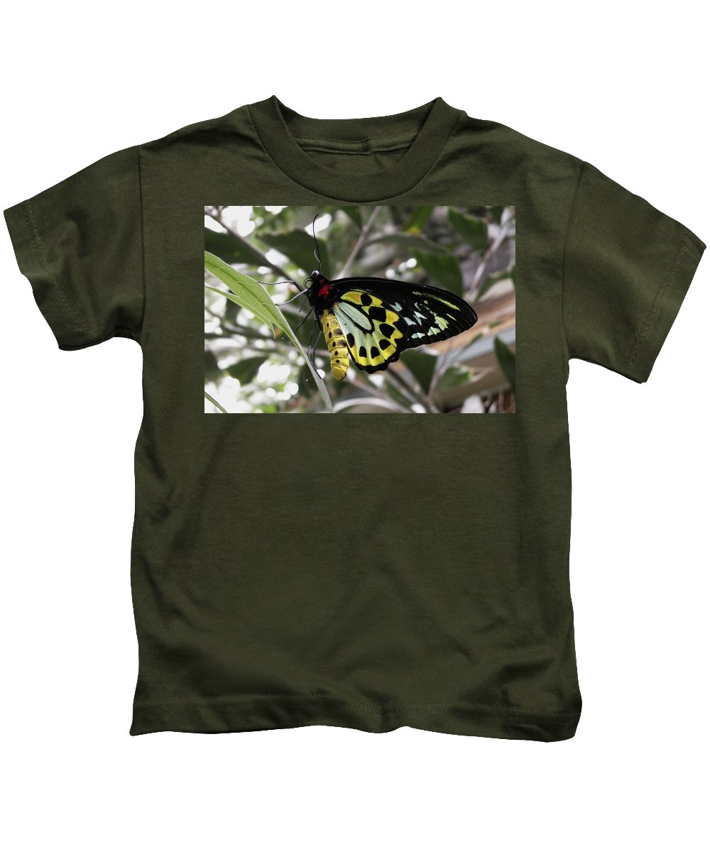 Butterfly Kids T-Shirt featuring the photograph Butterfly One by Nancy Griswold