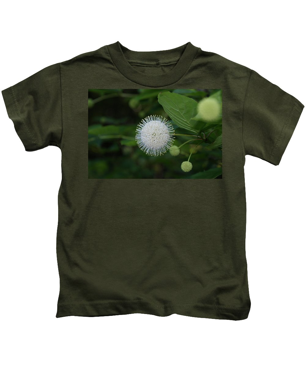 Usa Kids T-Shirt featuring the photograph Button Bush by Holly Eads