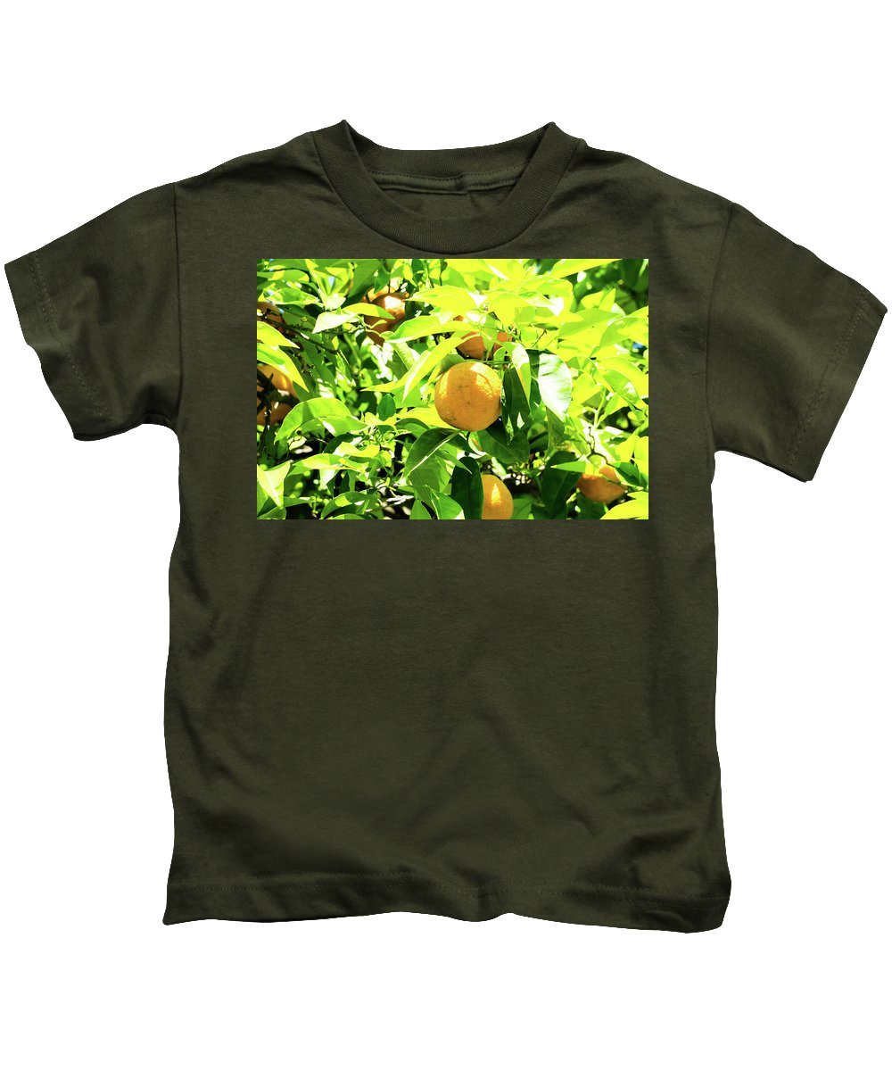 Orange Kids T-Shirt featuring the photograph California Bright Orange Fruit Tree In Downtown Sacramento In Ca by Alex Grichenko