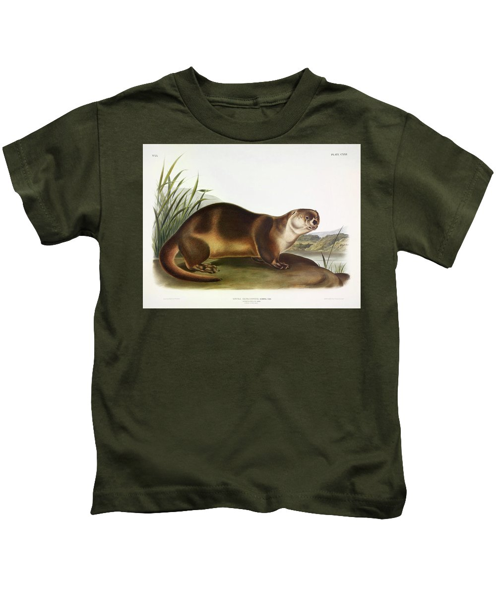 Northern River Otter Kids T-Shirts