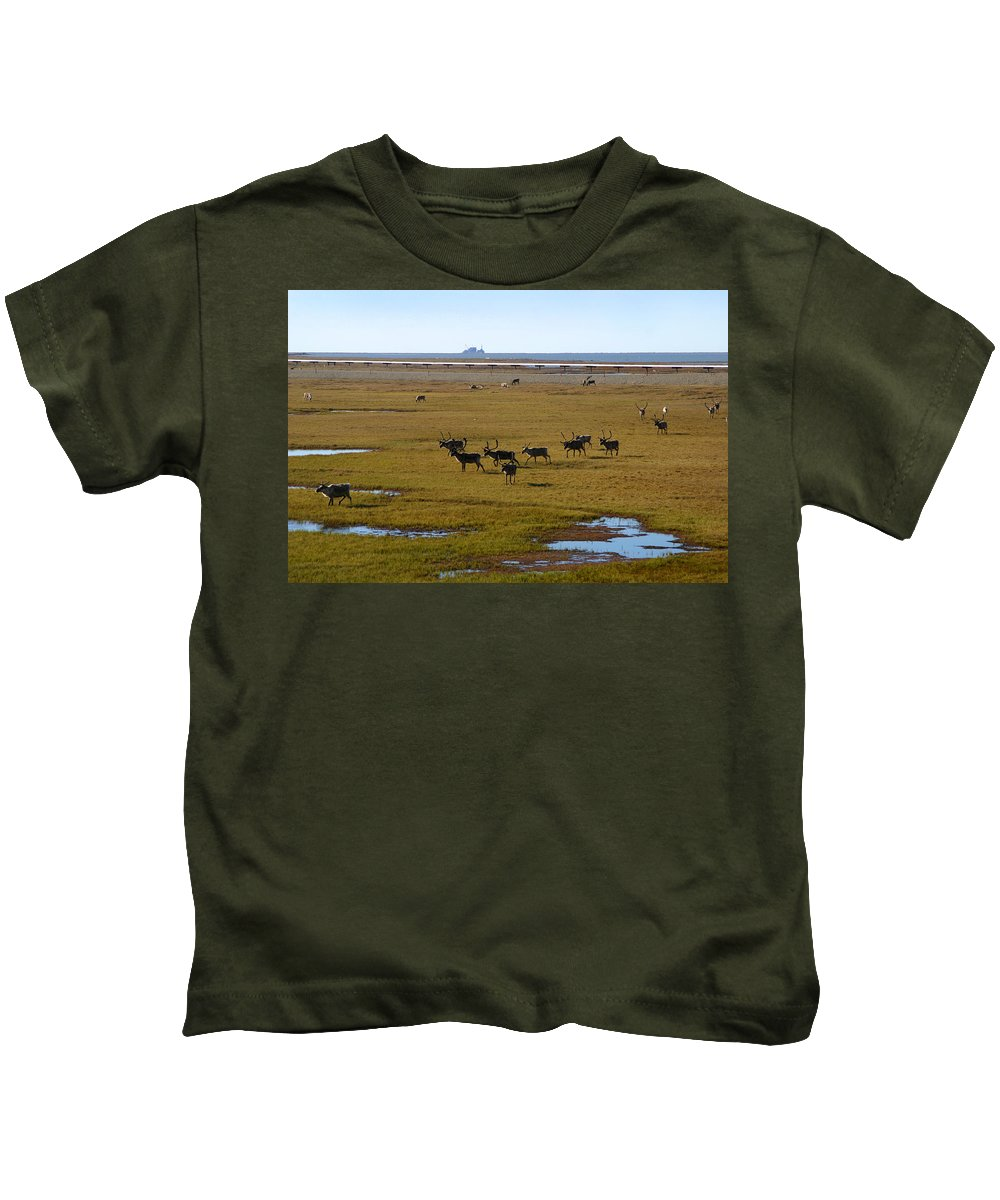 Caribou Kids T-Shirt featuring the photograph Caribou Herd by Anthony Jones