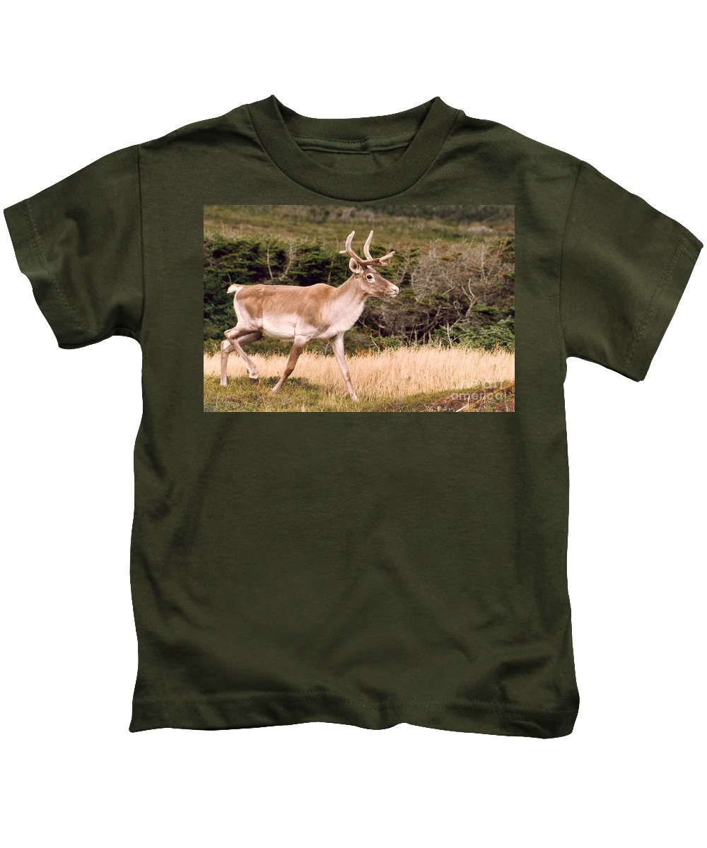 Nature Kids T-Shirt featuring the photograph Caribou by Mary Mikawoz