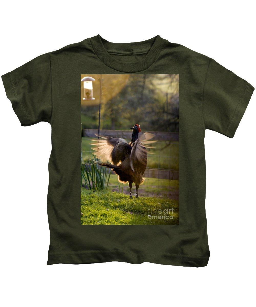 Pheasant Kids T-Shirt featuring the photograph Catching The Sunshine by Angel Ciesniarska