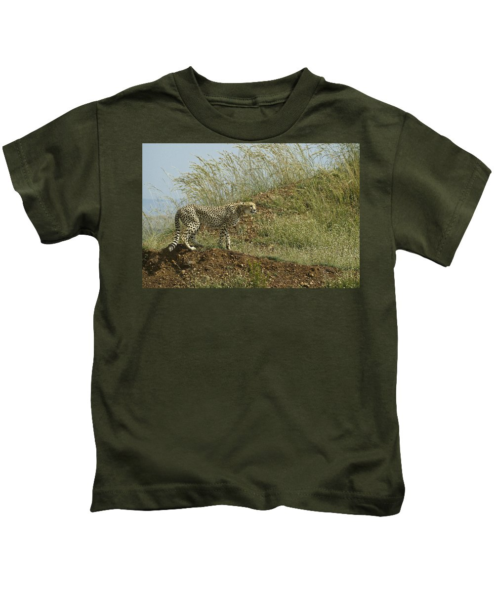 Africa Kids T-Shirt featuring the photograph Cheetah On The Prowl by Michele Burgess