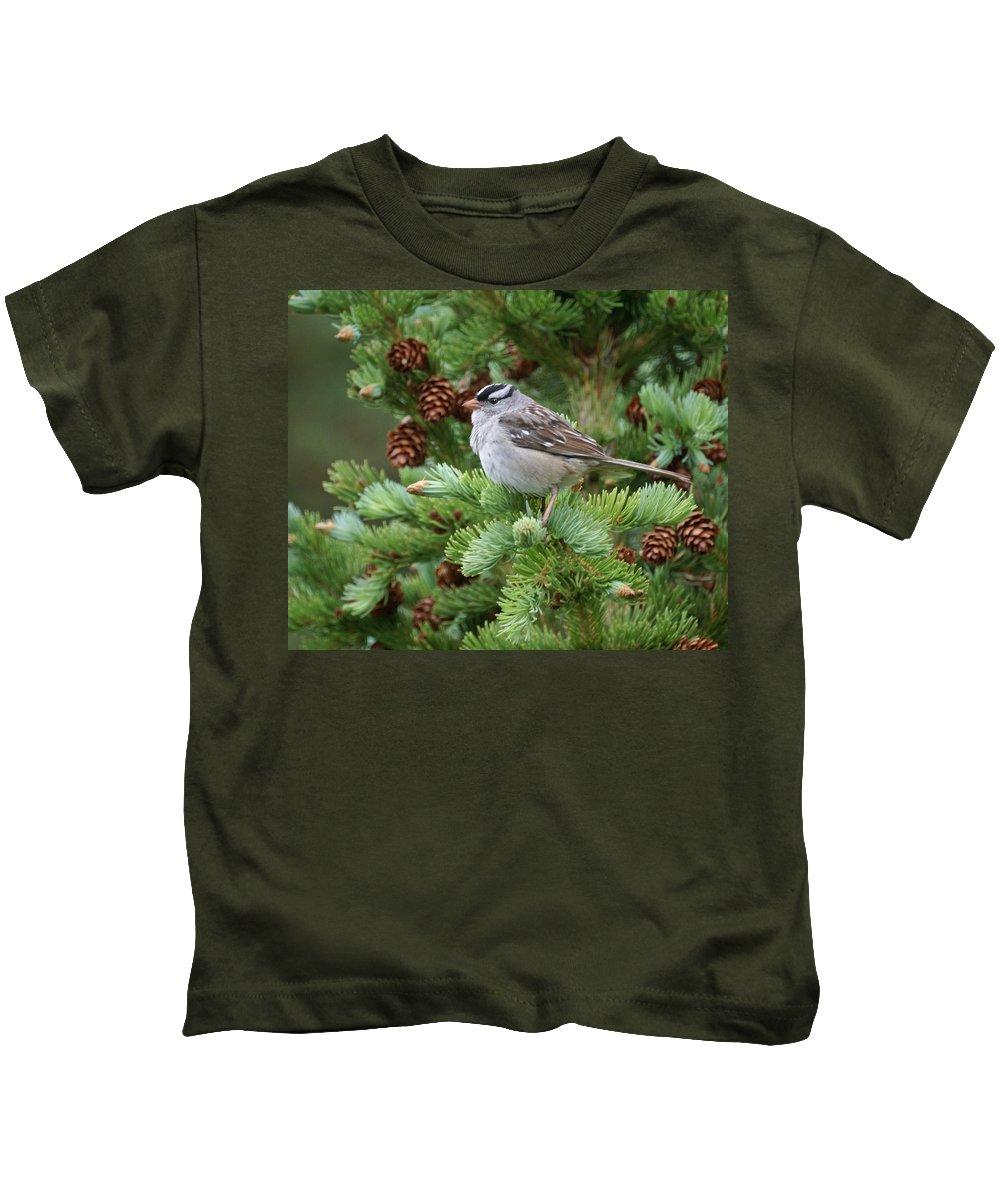 Chickadee Kids T-Shirt featuring the photograph Chickadee by Heather Coen