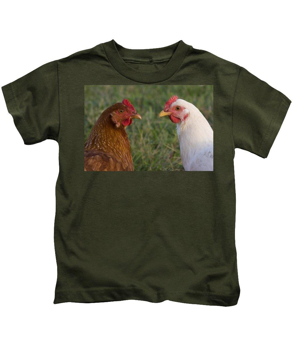 Chicken Hen Farm Rural Curious Bird Country Kids T-Shirt featuring the photograph Chickens by Andrei Shliakhau