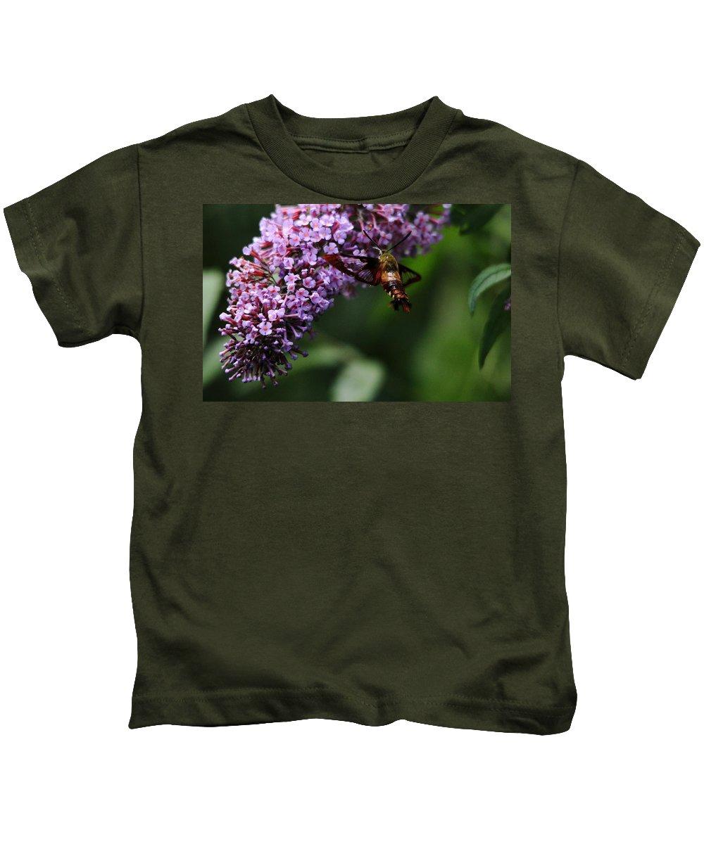 Hummingbird Moth Kids T-Shirt featuring the photograph Clearwing Hummingbird Moth by Debbie Oppermann