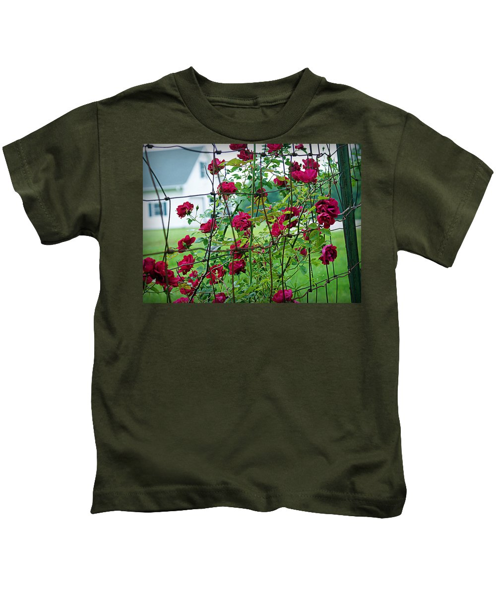 climbing Roses Kids T-Shirt featuring the photograph Climbing Roses by Cricket Hackmann