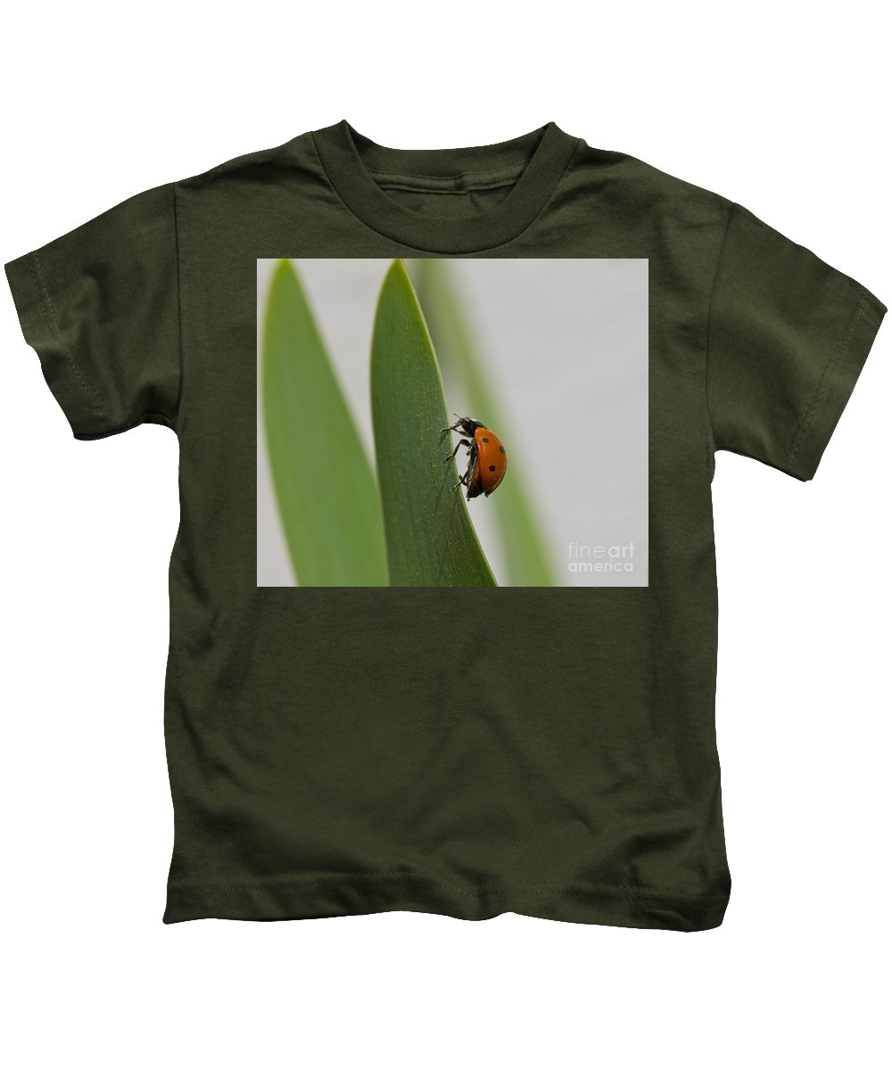 Background Kids T-Shirt featuring the photograph Close Up Of A Ladybug Walking On A Long Green Leaf by Mayank Yadav