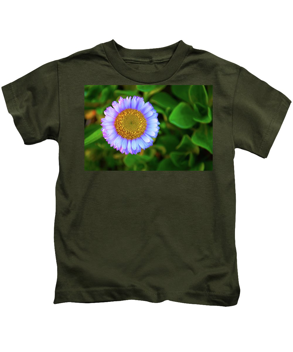 Aster Kids T-Shirt featuring the photograph Coastal Aster by Christine Dorfer