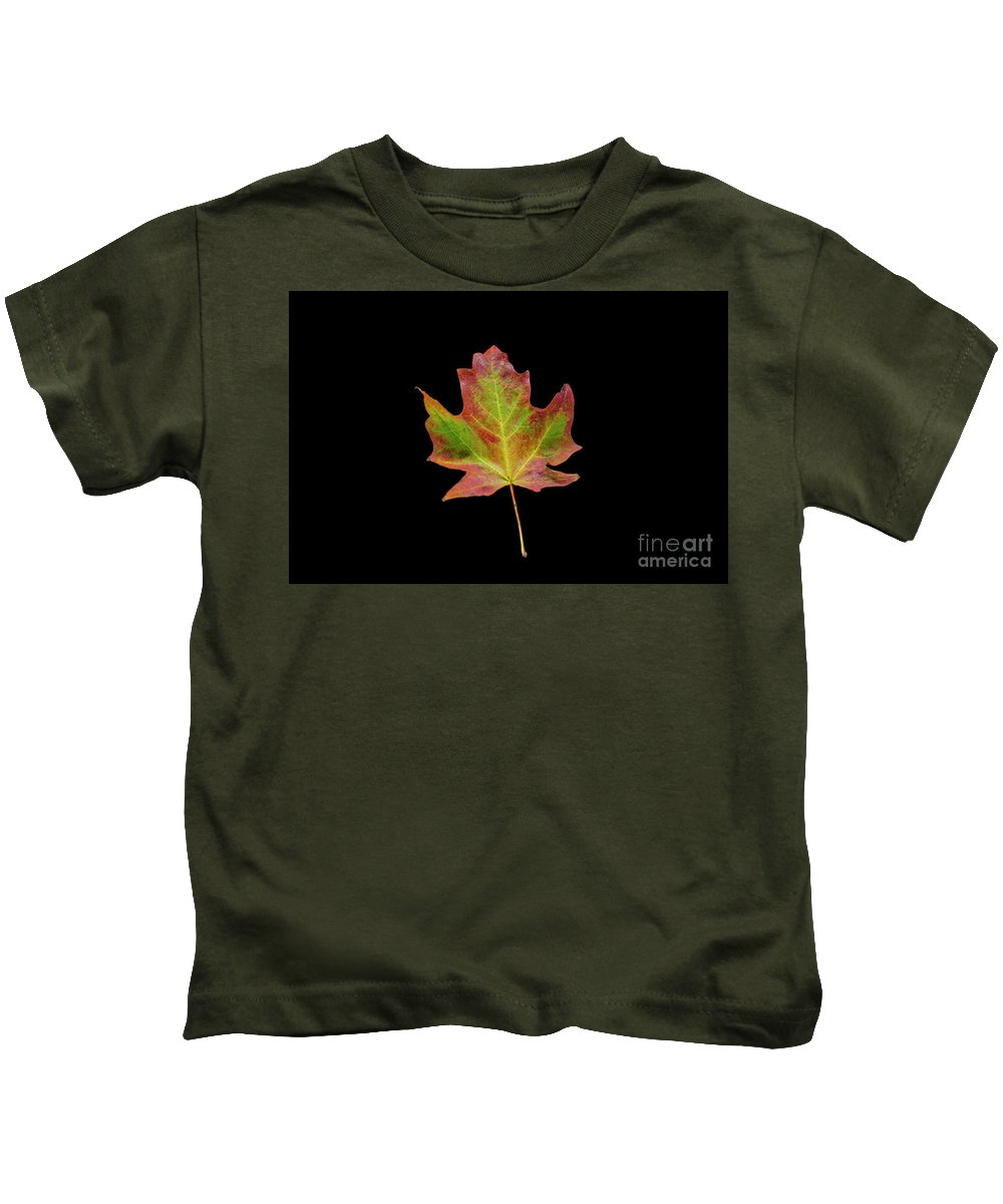 Minnesota Kids T-Shirt featuring the photograph Colorful Maple Leaf by David Parker