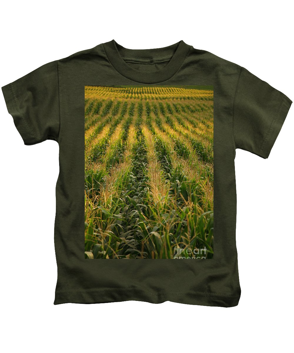 Acores Kids T-Shirt featuring the photograph Corn Field by Gaspar Avila