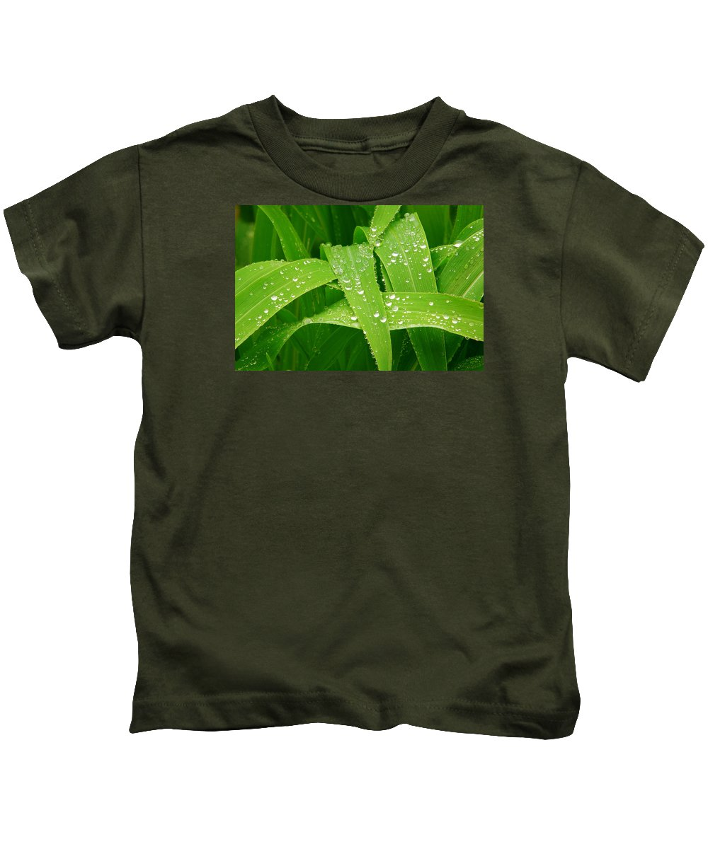 Rain Kids T-Shirt featuring the photograph Corn Leaves After The Rain by James BO Insogna