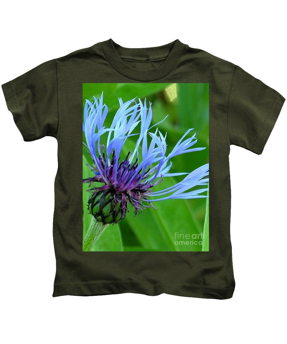 Blue Kids T-Shirt featuring the photograph Cornflower Centaurea Montana by Diane Greco-Lesser