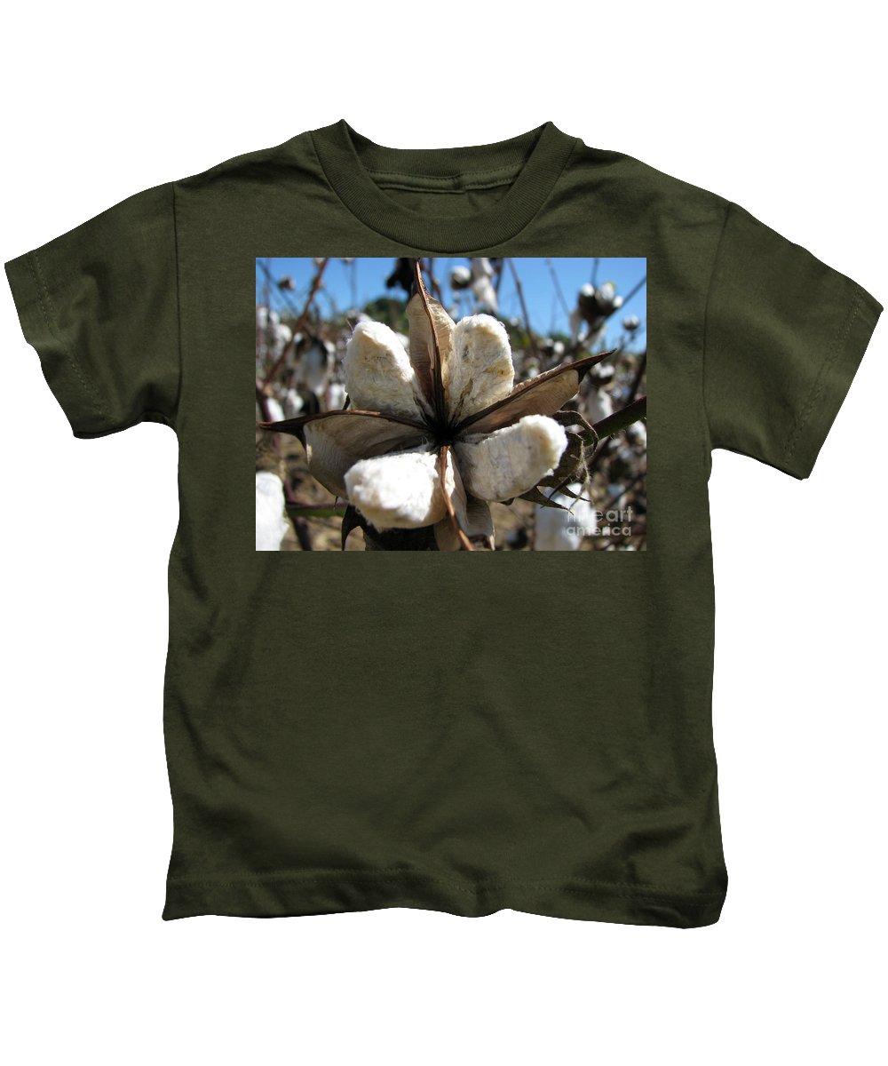 Cotton Kids T-Shirt featuring the photograph Cotton by Amanda Barcon