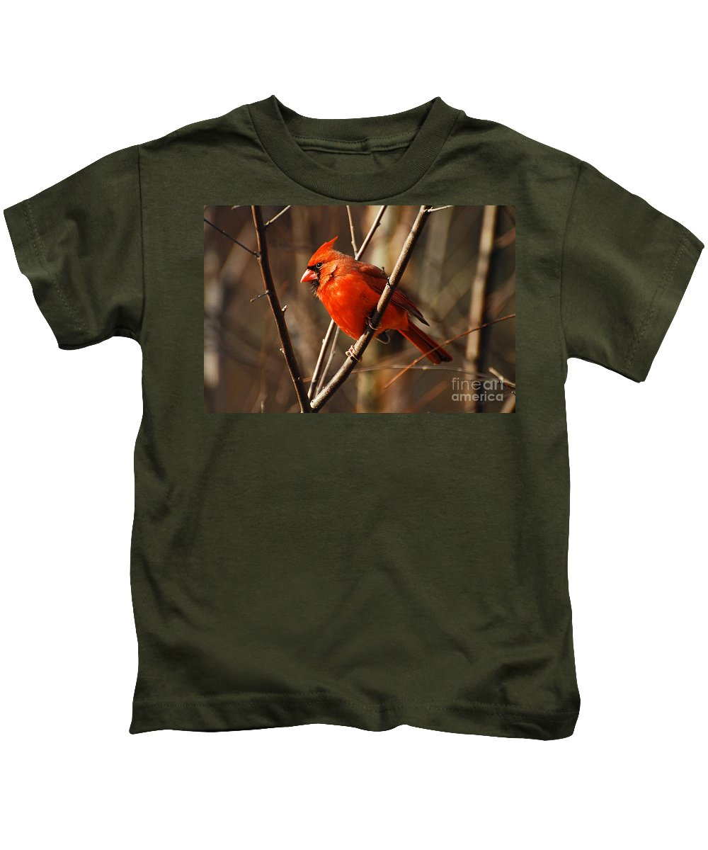 Wildlife Kids T-Shirt featuring the photograph Crimson King by Lois Bryan