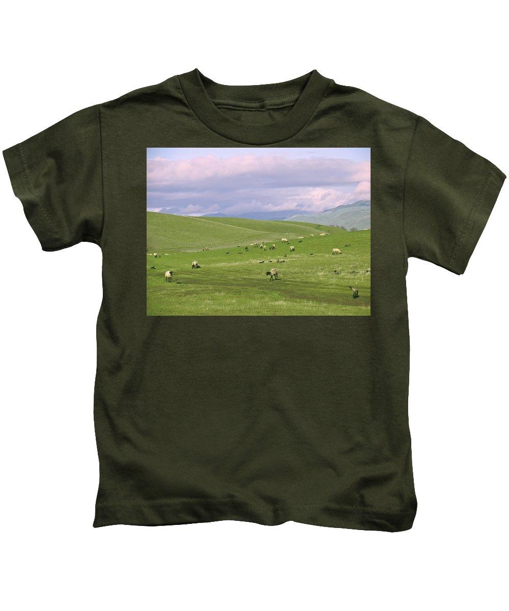 Landscape Kids T-Shirt featuring the photograph Cross Road Sheep by Karen W Meyer