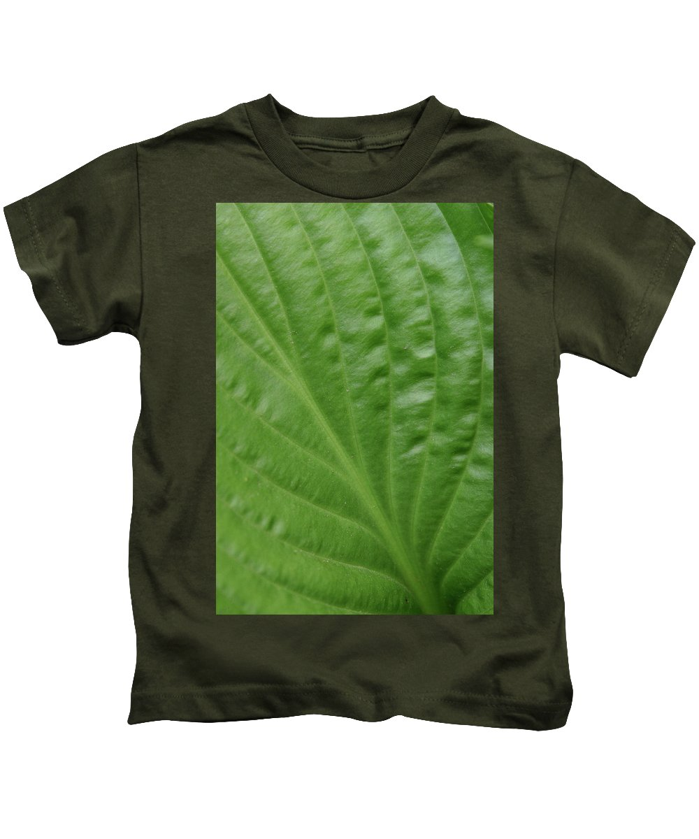 Abstract Kids T-Shirt featuring the photograph Curvy Leaf Lines by Karol Livote