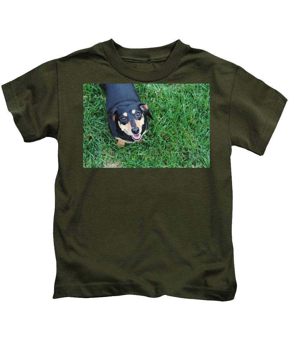 Smiling Kids T-Shirt featuring the photograph Dachshund Looking At Camera Smiling by Hunter Kotlinski