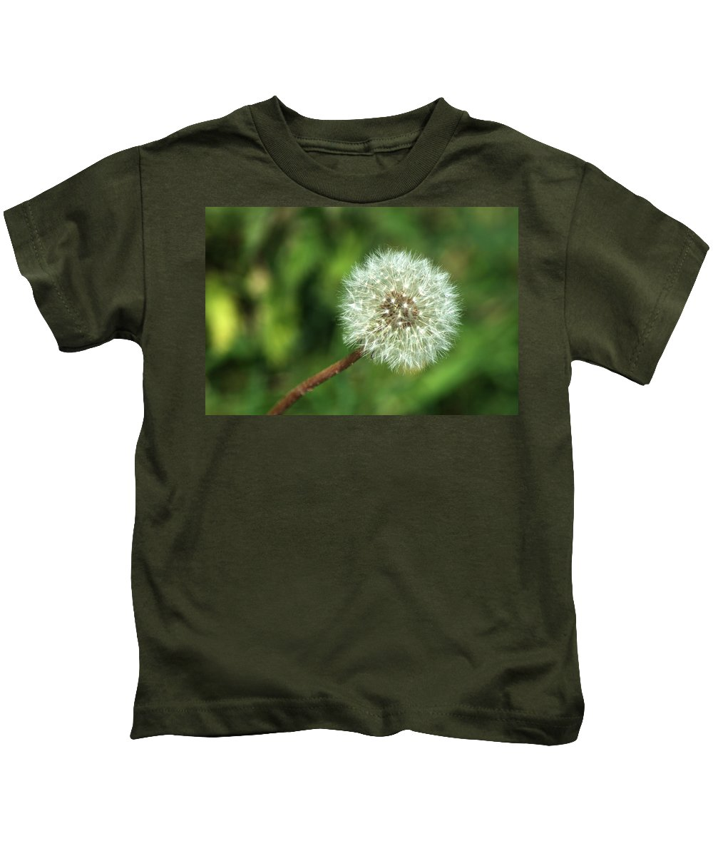Dandelion Kids T-Shirt featuring the photograph Dandelion Seed Head by Chris Day